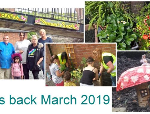It's Blooming Marvellous –   The Community Garden Project